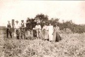 AGI289 Pea Picking in 1929 - Eva is the small figure in a dark coat (Court Farm can be seen in background)