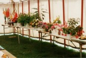 JSI475 1992 Flower Show in Ilminster Scouts Tent - 'flowers'