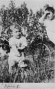 KGU773  40 Henry Albert Gummer's brother William's  boy Robert 3yr 10m. William was born in Seavington 6/1/1895 and married Louisa Jane Hawkins(born 27/101887London)