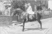 MPA161 Seavington St.Mary - Florence Alice Warry