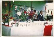 PPR574 1977 Queen Elizabeth II Silver Jubilee - Mugs