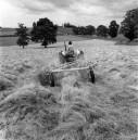 PWA445 1960s Pam Jeffery driving the tractor on West Street Farm