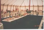 VJA485 1993 SGC Flower Show