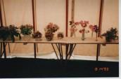 VJA481 1993 SGC Flower Show (4)